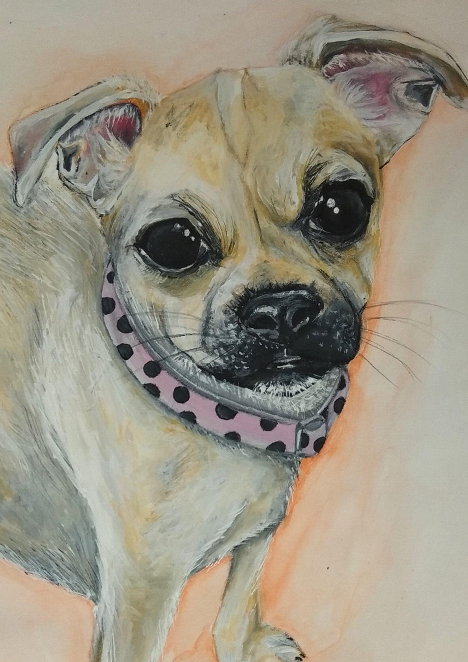 Dog perro encargo staminamandarina Sara Sánchez